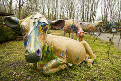 Painted cows. Three painted cows on a farm in the grass Royalty Free Stock Image