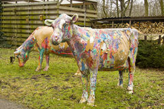 Painted cows. Two painted colorful cows standing in the grass Royalty Free Stock Photo