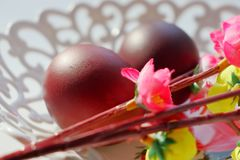 Painted dark red Easter eggs on a white lace openwork dish in the sun. Willow twigs with artificial flowers royalty free stock photos