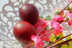 Painted dark red Easter eggs on a white lace openwork dish in the sun. Willow twigs with artificial flowers royalty free stock images