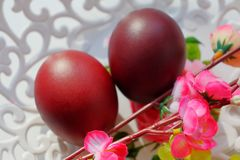 Painted dark red Easter eggs on a white lace openwork dish in the sun stock image