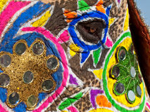 Painted and Decorated Elephant's face. Close up of elephants eye decorated and painted for Jaipur elephant Festival, India Royalty Free Stock Images