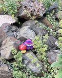 Decorated rocks in the garden royalty free stock images