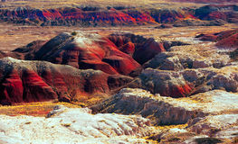 Free Painted Desert Stock Images - 11950294