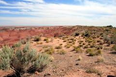 Painted Desert. In Arizona Wide Angle Stock Photo