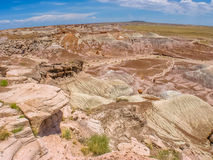 Petrified Forest Arizona Royalty Free Stock Images