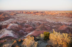 Painted Desert in the late evening light Stock Images
