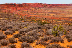 Painted Desert Yellow Orange Red Sandstone Arches National Park Moab Utah Stock Photo