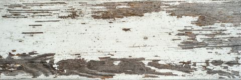 Painted dirty white color, shabby aged wooden plank texture royalty free stock image