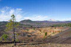 Painted Dunes and Lassen Peak Royalty Free Stock Photos