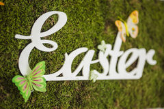 Painted easter board on moss with butterflies Stock Photo