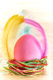 Painted Easter Egg in colorful nest on wooden background. Painted Easter Egg in colorful straw nest with feathers on wooden background Stock Photos