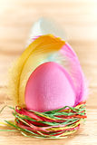 Painted Easter Egg in colorful nest on wooden. Painted Easter Egg in colorful straw nest with feathers on wooden background Stock Image