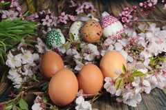 Painted Easter egg and grass with cherry branch Royalty Free Stock Photo