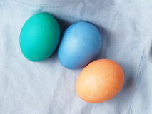 Painted easter egg. Painted easter group egg colored Royalty Free Stock Photo