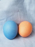 Painted easter egg. Painted easter group egg colored Stock Images