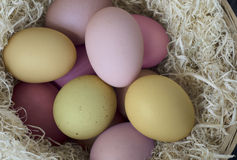 Painted Easter Eggs from Above Royalty Free Stock Image