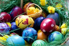 Painted Easter Eggs. Beautiful painted easter eggs on a colorful background and decorative chickens Stock Photo