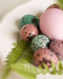 Painted Easter eggs big and small Royalty Free Stock Images