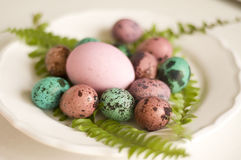 Painted Easter eggs big and small Royalty Free Stock Image