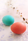 Easter eggs with apricot branch Stock Photos