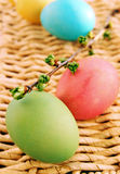 Easter eggs with cherry branch Stock Photos
