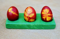 Painted easter eggs. Close up of easter eggs painted with onion skins Stock Photos