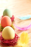 Painted Easter Eggs in colorful nests on wooden background. Painted Easter Eggs in colorful straw nests on wooden background Stock Photos