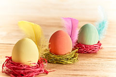 Painted Easter Eggs in colorful nests on wooden background. Painted Easter Eggs in colorful straw nests with feathers on wooden background Stock Photography