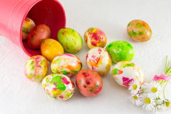 Painted Easter eggs and daisy flowers Stock Image