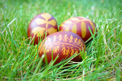 Painted Easter eggs . Royalty Free Stock Photo
