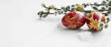 Painted Easter eggs decoration with spring buds branches and fea Stock Photos
