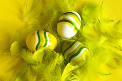 Painted easter eggs feathers. Painted easter egg with feathers yellow background Stock Photos