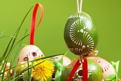 Painted easter eggs. On the green background stock photos