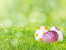 Painted Easter eggs on the green grass lawn spring background. Painted Easter eggs on the fresh green grass lawn spring blurred background Stock Photography