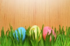 Painted Easter eggs in a green grass on a wooden background. Happy Easter Royalty Free Stock Images