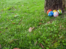 Painted Easter eggs hidden on the grass behind a tree trunk Royalty Free Stock Photos