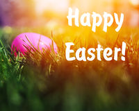 Painted Easter eggs hidden in the grass Stock Image