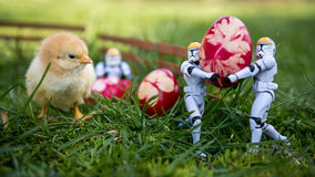 Painted Easter eggs and imperial trooper star wars. And chicken Royalty Free Stock Photo