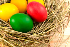 Painted Easter eggs lie in a nest of hay. Easter eggs, painted in green, red, yellow, lie in a nest of hay Royalty Free Stock Image
