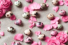 Painted easter eggs lying on white plate stock photography
