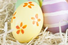 Painted Easter Eggs in Nest Stock Image