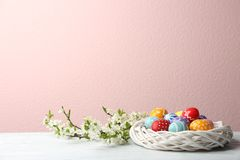 Painted Easter eggs in nest and blossoming branches. On table against color background. Space for text royalty free stock image
