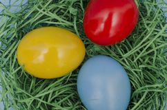 Painted Easter eggs in a nest, close up Royalty Free Stock Photo