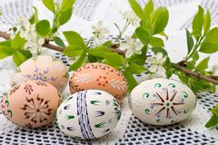 Painted Easter eggs. With a twig on the desk royalty free stock photo