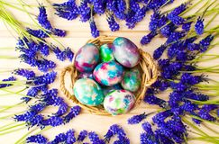 Painted Easter eggs and purple spring flowers royalty free stock images