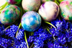 Painted Easter eggs and purple spring flowers stock photos