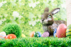Painted Easter eggs scene. Lot of painted easter eggs hidden in a forest. Blurred Easter bunny Royalty Free Stock Photos