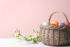 Painted Easter eggs in wicker basket and blossoming branches on table against color background. Space for text stock photo