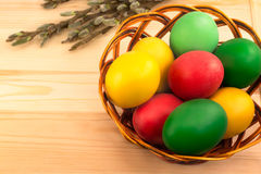 Painted Easter eggs in a wicker basket with a sprig of a blossom. Ing tree on a wooden board Royalty Free Stock Photo